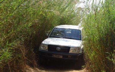 Une nouvelle méthode de traitement préventif à Madagascar