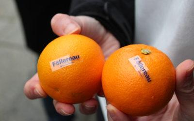 Opération Oranges de Noël : Solidaires des réfugiés au Liban