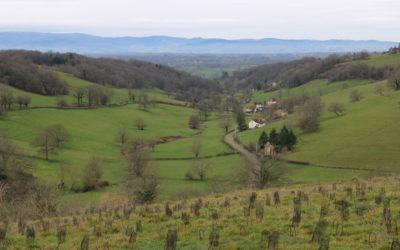 France : L'histoire de trois entrepreneurs en milieu rural