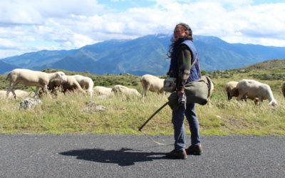 La passion d'une bergère en pays catalan