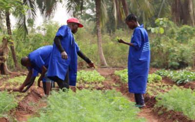 Bénin : Une formation agro-pastorale au service des anciens malades